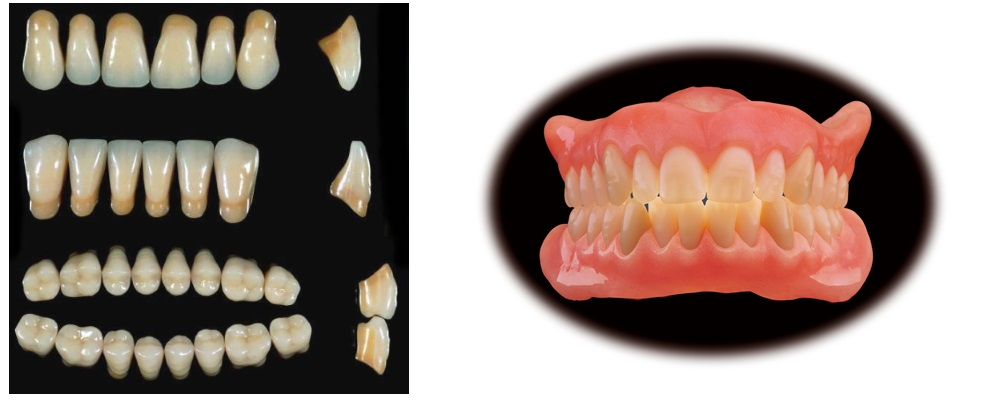 Enigma Takım Dişler
